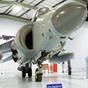 BAe Sea Harrier in Hall One